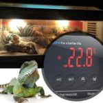 best reptile dimming thermostat